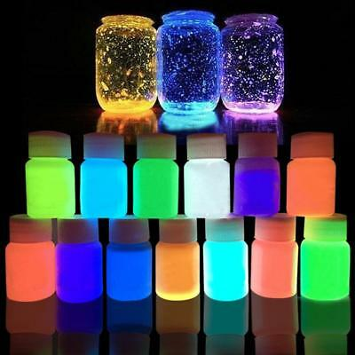 20g Glow in the Dark Acrylic Luminous Paint Bright Pigment Party Decoration  FT