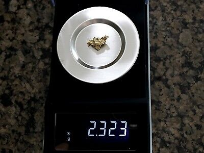 Alaskan Gold Nugget 2.323 grams Nice Picker, No Reserve & Free Shipping!