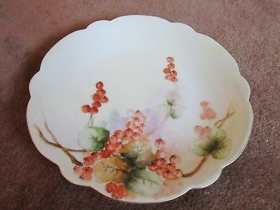 Orange Physalis Beautiful Fall Autumn Vtg T&V Limoges France Decorative Plate