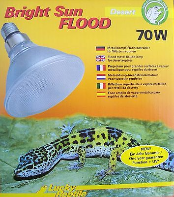 Lucky Reptile Bright Sun Flood Desert 70 W