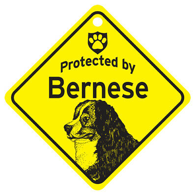 Metal Bernese Mountain Dog protected by sign with suction cup 4x4 or 8x8 xing