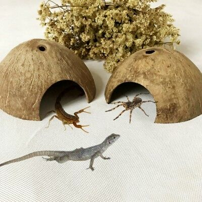 Reptile Hide Habitat Natural Coconut Shell Lizard Spider Small Animal Cave House