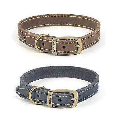 Ancol Strong Timberwolf Leather Dog Collars , Leads Collar