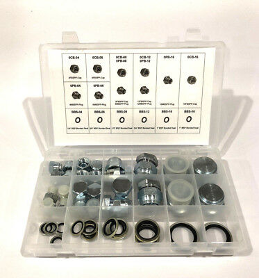 50 Pc Kit Bspp British Pipe Cap & Plug Adapter Fitting Set