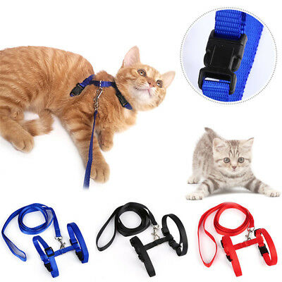 ONE Cat Puppy Adjustable Harness Collar Nylon Leash Lead Safety Walking Rope cn