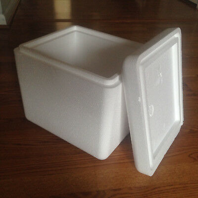 """Styrofoam Insulated Shipping Container Box Cooler 13.5""""x12.25""""x11.5"""""""