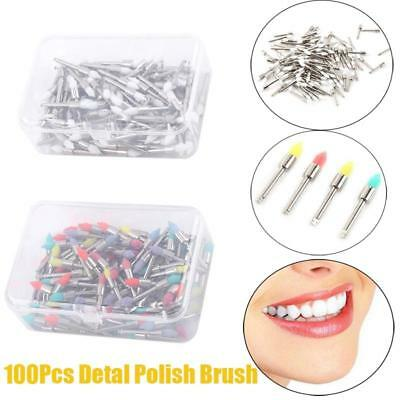 100pcs Dental Prophy Polishing Brushes Polisher Nylon Tapered Brush