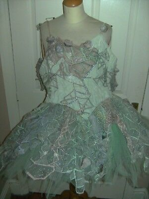 Ladies Sleeping Beauty Costume Theatre Tutu By The Royal Opera House Show Dress
