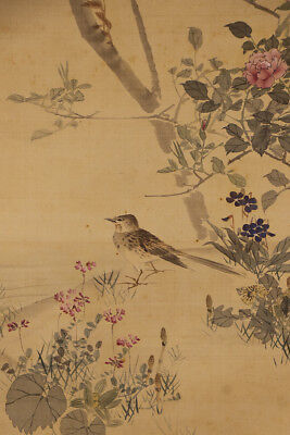 "JAPANESE HANGING SCROLL ART Painting ""Bird and Flower"" Asian antique  #E1237"