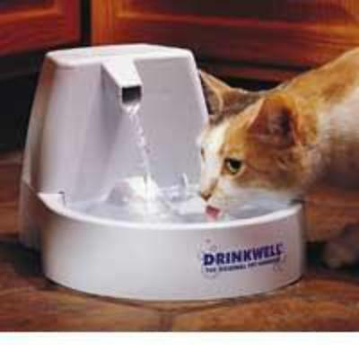 Drinkwell Pet Fountain Small Dogs & Cats