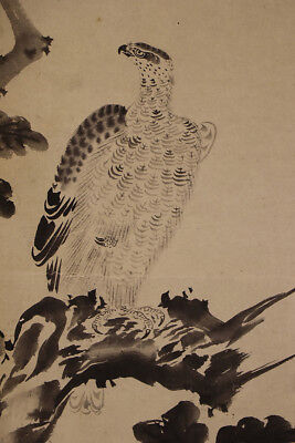 "JAPANESE HANGING SCROLL ART Painting ""Hawk"" Asian antique  #E1289"