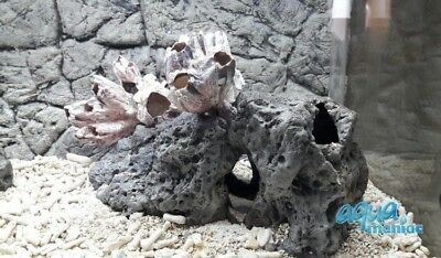 Fish Hideaway Limestone Caves perfect for planting MOSS aquarium plants pots