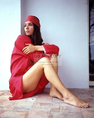 8X10 PUBLICITY PHOTO BT260 VIOLANTE PLACIDO ITALIAN ACTRESS AND SINGER