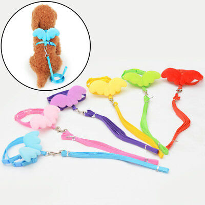 Pets Dogs Rabbits Ferret Pig Harness Leash Adjustable Pet Angel Wing Lead Strap