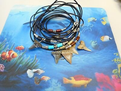 Lot of 6 Fossil Mako Shark Tooth Necklaces  Beachwear USA and Chile
