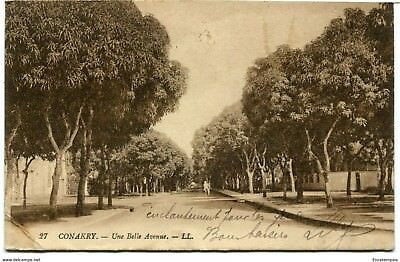 CPA-Carte postale-  GUINEE -Conakry - Une belle Avenue - 1924 (CP1208)