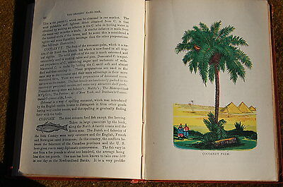 1882 General Store GROCERS HANDBOOK Great Reference Tool Book --NO RESERVE!!!