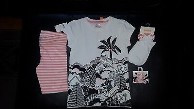 NWT Gymboree Animal Party Jungle Tee Coral Striped Leggings Socks Hair Pc Sz 6