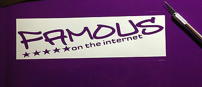 famous on the Internet Aufkleber BMW AUDI VW Renault Peugeot Honda Nissan Tuning