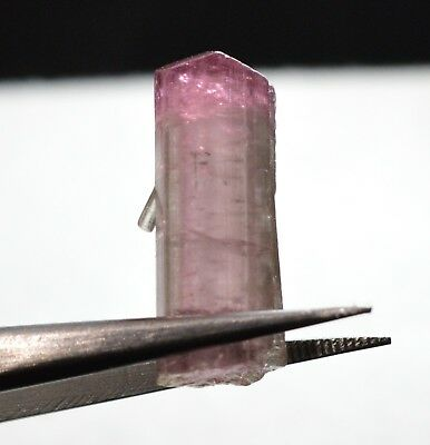 Tourmaline bicolore terminée 13,13 carats  Natural terminated bicolor tourmaline