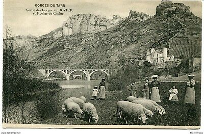 CPA - Carte postale -  FRANCE -Gorges du Tarn (CPV529)