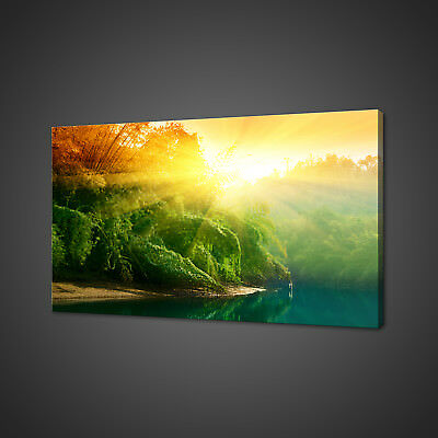 Sunrise In Jungle Canvas Picture Print Wall Art Home Decor Free Fast Delivery