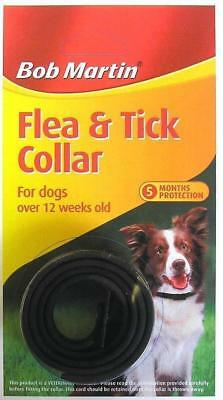 Dog  Flea And Tick Collar   Fit Dogs Of All Sizes