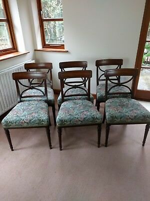 Set Six Regency Mahogany Dining Chairs