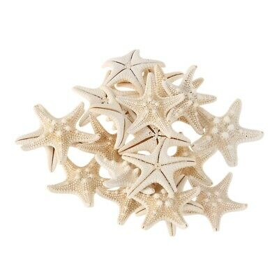 20pcs White Bleached Knobby Starfish Wedding Display Seashell Craft Decor X6F3