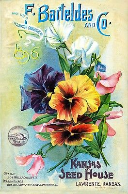 Bartelde Collection Vintage Fruits Seed Packet Catalogue Advertisement Poster 3