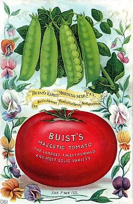Buist Collection Vintage Fruit Seeds Packet Catalogue Advertisement Poster 4