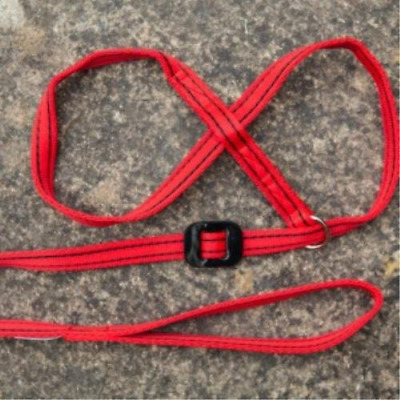 Gencon All-In-1 Dog Headcollar & Lead In One - Red/Black