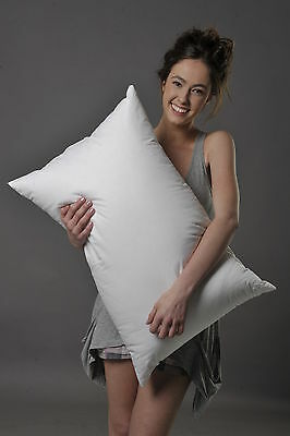 Standard Size Soft Pillow 95% White Siberian Duck Down Better Than Hotel Quality