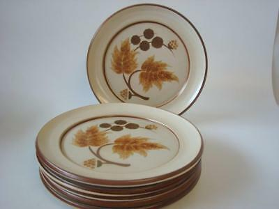 "Denby Cotswold 6 X Salad Plates Look Unused 8"" 20 Cms"