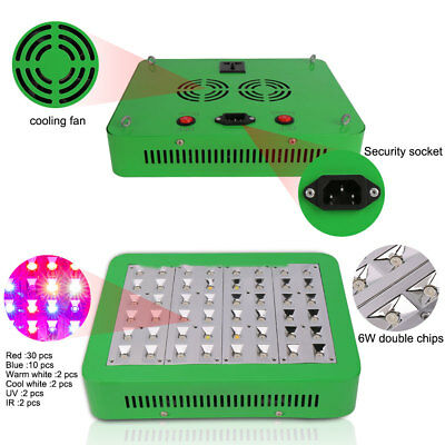 300W LED Grow Light Panel Hydrokultur Lampe Full Spectrum with VEG BLOOM Switch