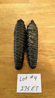 Two Cuckoo clock Weights  Parts Only Or Repairs