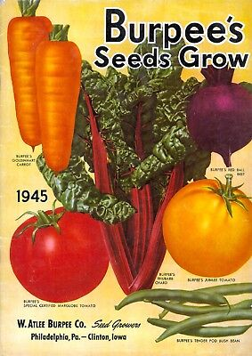 Burpee Collection Vintage Fruit Seeds Packet Catalogue Advertisement Poster 7