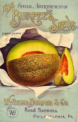 Burpee Collection Vintage Fruit Seeds Packet Catalogue Advertisement Poster 11