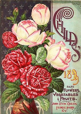 Childs Collection Vintage Fruit Seeds Packet Catalogue Advertisement Poster 3