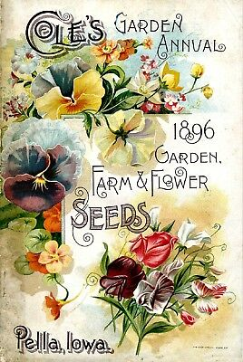 Coles Collection Vintage Fruit Seeds Packet Catalogue Advertisement Poster 2