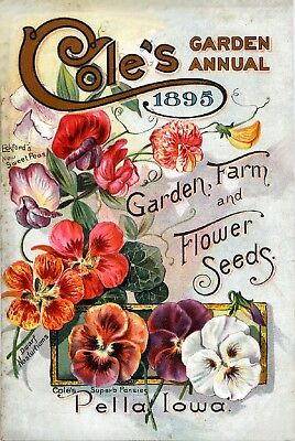 Coles Collection Vintage Fruit Seeds Packet Catalogue Advertisement Poster 9