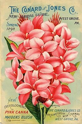 Conard Collection Vintage Fruit Seeds Packet Catalogue Advertisement Poster 3