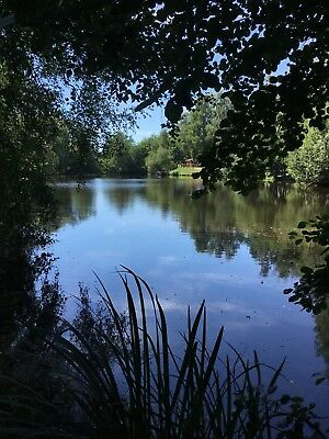 3 Acre Fishing Lake For Sale In The Dordogne France