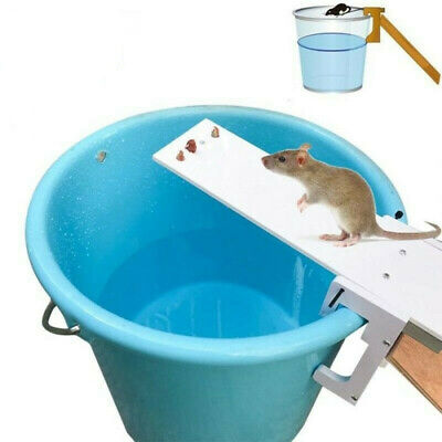 Useful Auto Reset Durable New Original Walk The Plank Mouse Trap Rodent Home NEW