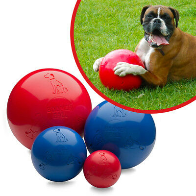 Halti Boomer Ball Indestructible Durable Solid Dog Puppy Toy  (Colour may vary)
