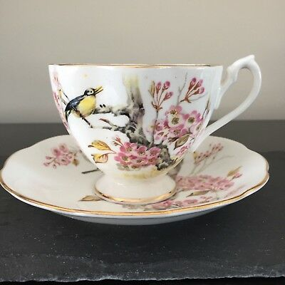 Queen Anne Magpie Plum Blossoms Teacup And Saucer Reduced Shipping