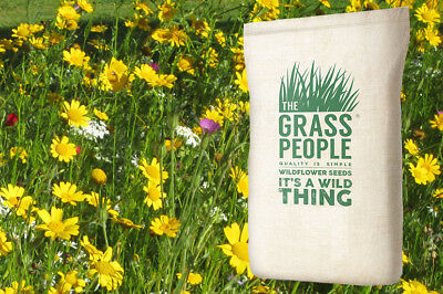 100% Annual Wildflower Seed Native to the UK: Meadow Magic - 100g & 1kg packs
