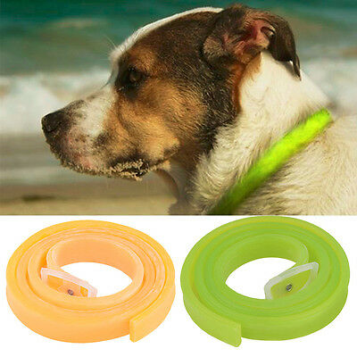 Tick Anti Dog Pet Cat Repel Flea Protection Pet Against Collar Also for People