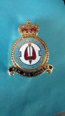 RAF 10 Fighter Squadron lapel pin badge