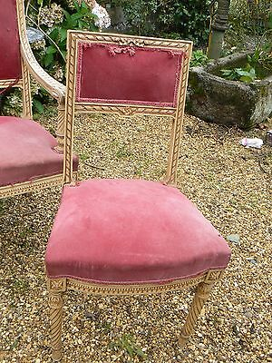 Lovely Pr Orig Painted French Chairs Recovering Restore, Couch Listed Seperatel
